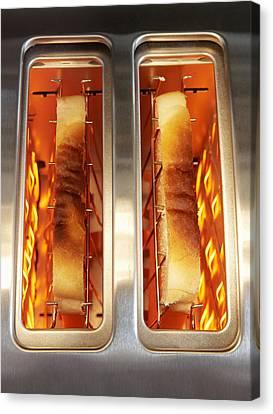 Toast Canvas Print by Mark Sykes
