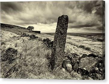 Top Withens Canvas Print by Mark Haley