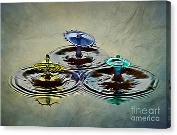 Triple Play Canvas Print by Susan Candelario
