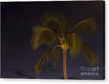 Tropical Paradise Canvas Print by Sharon Mau