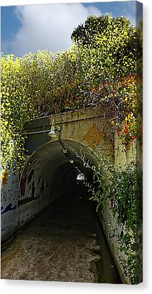 Tunnel At Crystal Cove Canvas Print by Ron Regalado