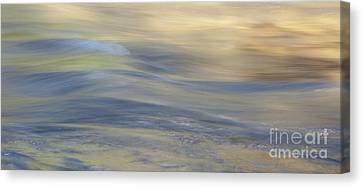 Water Impression 3 Canvas Print by Catherine Lau