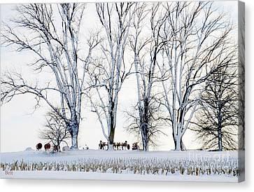 Winter Calm Canvas Print by Christine Belt