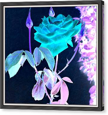 Flowers Flowers And Flowers Canvas Print by Anand Swaroop Manchiraju