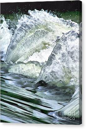 Waterfall Canvas Print by Odon Czintos