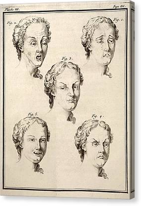 1749 Human Emotions And Expression Buffon Canvas Print by Paul D Stewart
