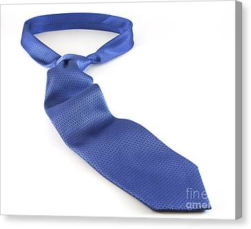 Blue Tie Canvas Print by Blink Images