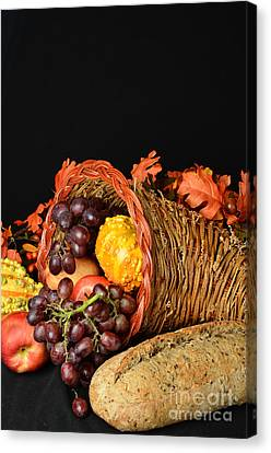Cornucopia  Canvas Print by Timothy OLeary