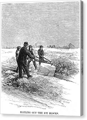 Cutting Ice, C1870 Canvas Print by Granger