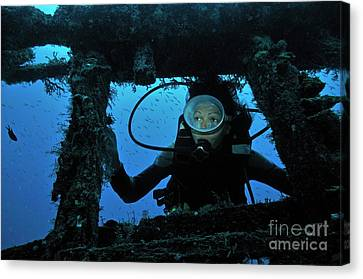 Diver Exploring Shipwreck Canvas Print by Sami Sarkis