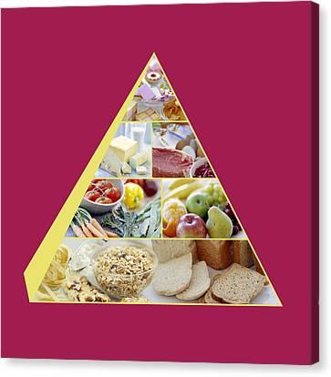 Food Pyramid Canvas Print by David Munns