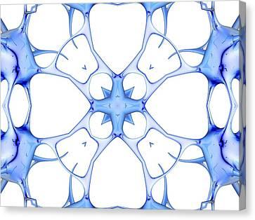 Neurons, Kaleidoscope Artwork Canvas Print by Pasieka