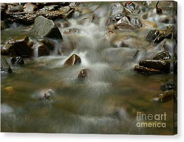 River Canvas Print by Odon Czintos