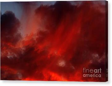 Rosy Sky Canvas Print by Michal Boubin