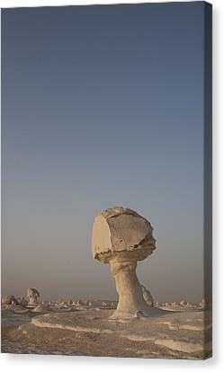 The Strange Eroded Formations Canvas Print by Taylor S. Kennedy