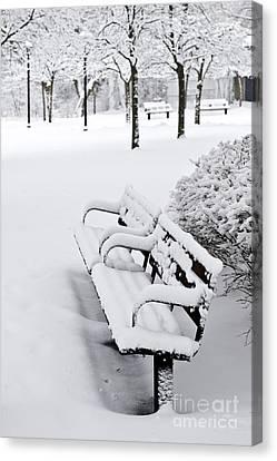 Winter Park Canvas Print by Elena Elisseeva