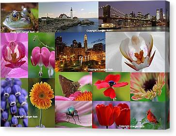 2012 Photography Artwork Highlights Canvas Print by Juergen Roth