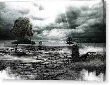 No Title  Canvas Print by Mariusz Zawadzki