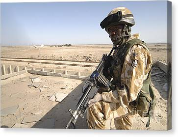 A British Army Soldier Provides Canvas Print by Andrew Chittock