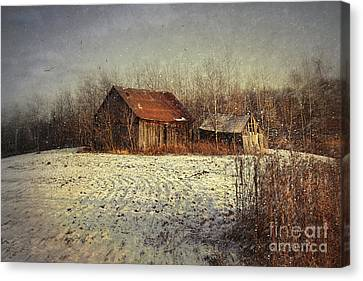Abandoned Barn With Snow Falling Canvas Print by Sandra Cunningham