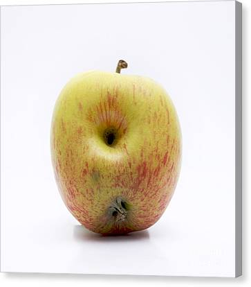 Apple Canvas Print by Bernard Jaubert