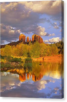 Cathedral Rock Reflected In Oak Creek Canvas Print by Tim Fitzharris