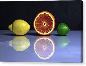 Citrus Fruits Canvas Print by Joana Kruse