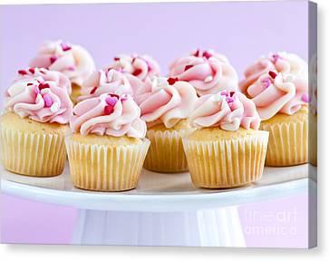 Cupcakes Canvas Print by Elena Elisseeva
