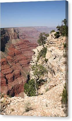 Grand Canyon National Park Arizona Usa Canvas Print by Audrey Campion