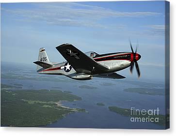 North American P-51 Cavalier Mustang Canvas Print by Daniel Karlsson
