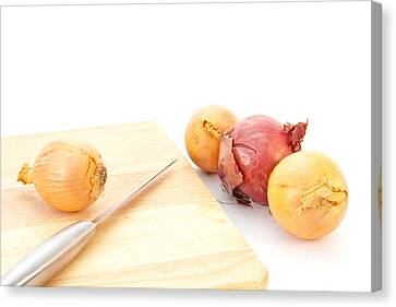 Onions Canvas Print by Tom Gowanlock