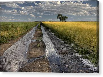 Prairie Road Storm Clouds Canvas Print by Mark Duffy