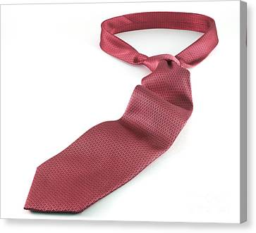 Red Tie Canvas Print by Blink Images