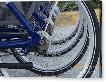 Bicycles Canvas Print by Blink Images