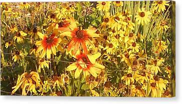 Garden  Flowers  Canvas Print by Thelma Harcum