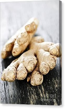 Ginger Root Canvas Print by Elena Elisseeva