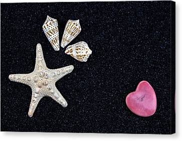 Starfish On Black Sand Canvas Print by Joana Kruse