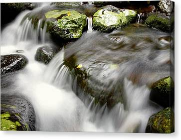 Stream Canvas Print by Les Cunliffe
