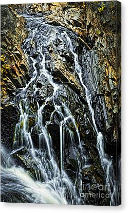 Waterfall Canvas Print by Elena Elisseeva