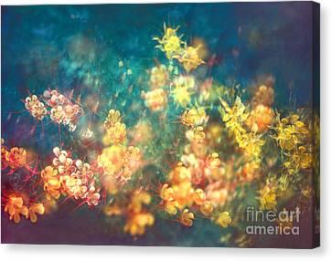 78-23 Columbine -  Flower Dance Canvas Print by Renata Ratajczyk