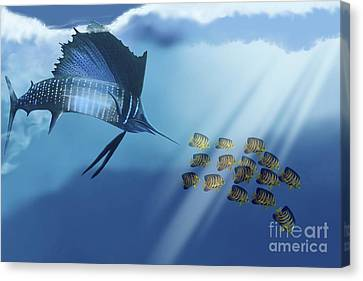 A Blue Marlin Swims After A School Canvas Print by Corey Ford