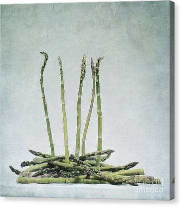A Bunch Of Asparagus Canvas Print by Priska Wettstein