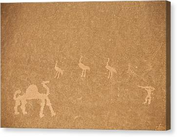 A Close View Of Ancient Petroglyphs Canvas Print by Taylor S. Kennedy