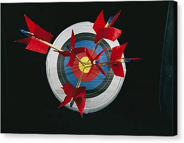 A Close View Of Arrows Stuck In A Bulls Canvas Print by Richard Nowitz