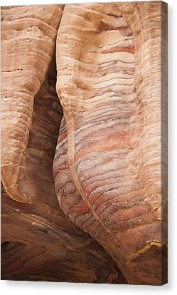 A Close View The Layered Sandstone Canvas Print by Taylor S. Kennedy