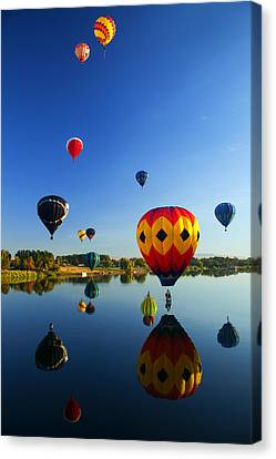 A Dozen  Reflected Canvas Print by Mike  Dawson