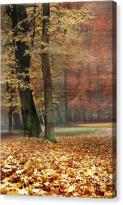 A Foggy Autumn Day Canvas Print by Hannes Cmarits
