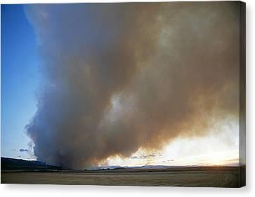 A Forest Fire Burns In The Gallatin Canvas Print by Gordon Wiltsie