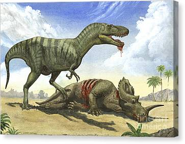 A Gorgosaurus Libratus Stands Canvas Print by Sergey Krasovskiy
