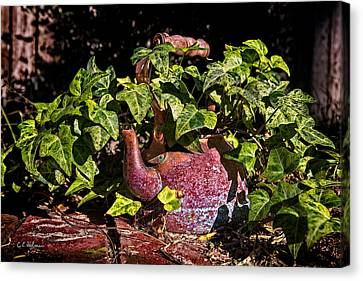 A Kettle Of Greens Canvas Print by Christopher Holmes